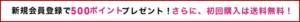 ANAPの新規会員登録クーポン情報!(サンプル画像)