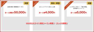 ANAの公式サイト掲載クーポン情報!(サンプル画像)